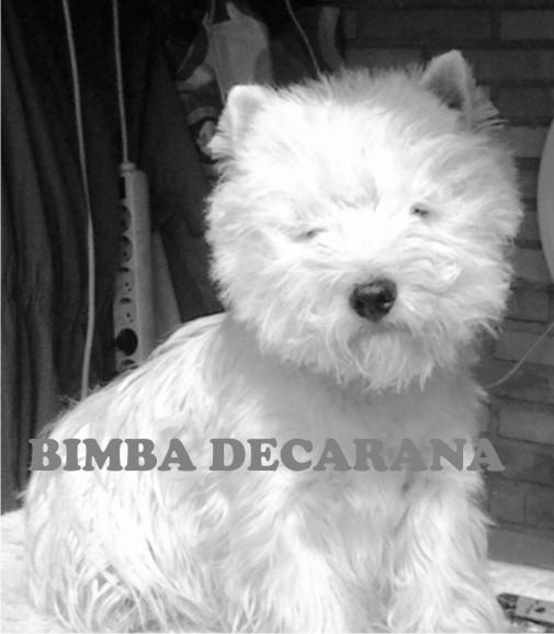 bimba_decarana