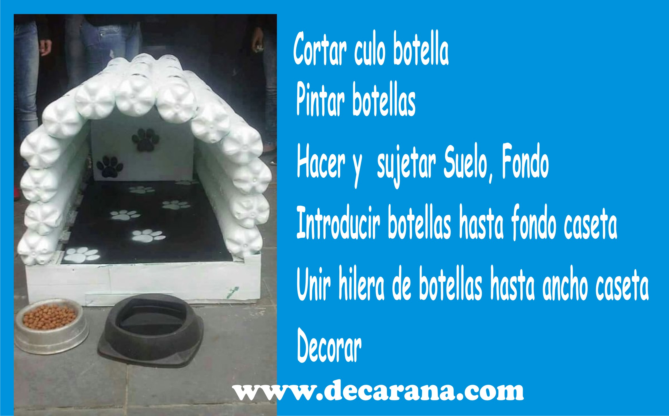 Caseta_Con_Botellas_Pet