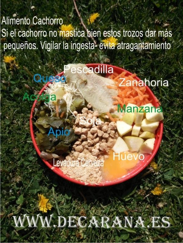 Alimentación Natural Perros